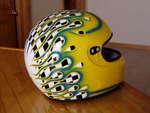 Highlight for Album: Helmet
